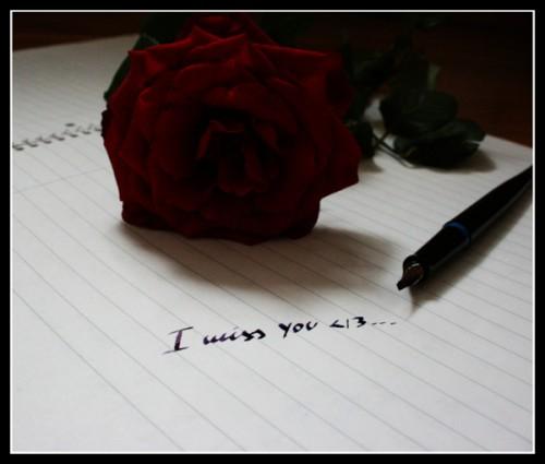 Miss_you_by_schwarzmaehne.jpg